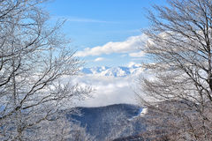 Winter On The Mountain Stock Image