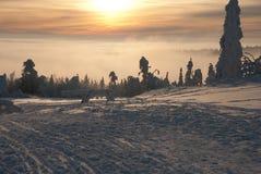 Winter at the Orlicke hill. Trail sleddog race Sedivacek's long in Czech republic Royalty Free Stock Photo
