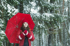 Winter outdoors portrait of cheerful woman in warm Stock Photos