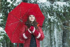 Winter outdoors portrait of smiling young woman Royalty Free Stock Images