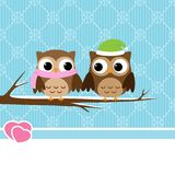 Winter owl couple Royalty Free Stock Image