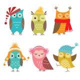 Winter owls vector illustration