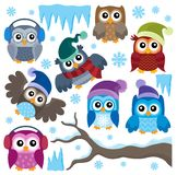 Winter owls thematic set 1 Royalty Free Stock Photography