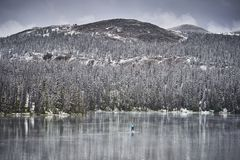 Winter paddleboarding in the mountains royalty free stock image