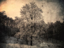 Winter painting Stock Photography