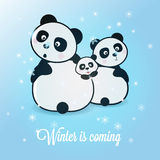 Winter panda Royalty Free Stock Photography