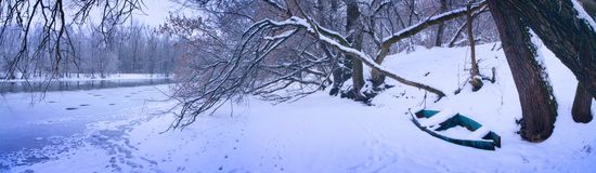 Winter panorama. Trees and lake Stock Photo