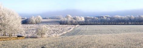 Winter panorama Stock Photography