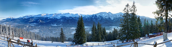 Winter panorama. Royalty Free Stock Photography