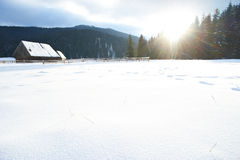 Winter panorama. Royalty Free Stock Photos