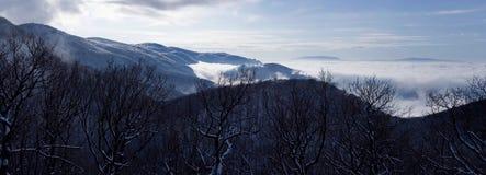 Winter panorama. Royalty Free Stock Photo