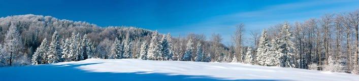 Winter panorama Royalty Free Stock Photos