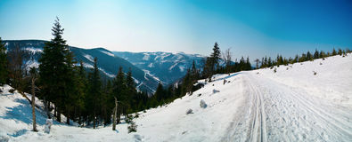 Winter panorama. With cross country track Royalty Free Stock Images