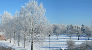 Winter panorama Stock Photos