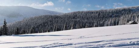 Winter panorama. A beautiful winter panorama in the mountains. Photo taken in Spindleruv Mlyn, Czech Republic royalty free stock photo