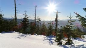 Winter Panorama Behind Tree Aerial 4k. 4k aerial of a winter landscape in Polish mountains stock video footage