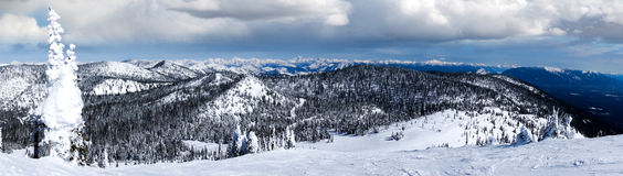 Winter Panorama of Big Mountain, Montana, Overlooking Glacier Na stock images