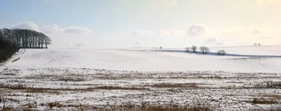 Winter panorama (detailed) Royalty Free Stock Images