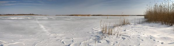 Winter panorama at the frosted lake. Frozen lake panorama, on a sunny day Stock Image