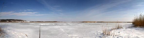 Winter panorama at the frosted lake. Frozen lake panorama, on a sunny day Royalty Free Stock Photos