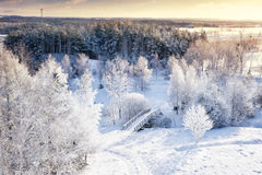 Winter panorama Royalty Free Stock Image