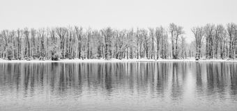 Winter Panorama Landscape royalty free stock photos