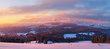 Winter panorama. Winter morning. stock image
