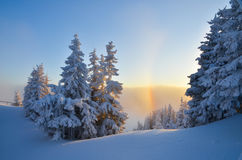 Winter panorama on mountain Royalty Free Stock Image