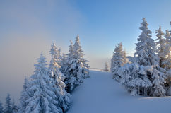 Winter panorama on mountain Stock Images