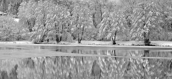 Winter panorama nature Royalty Free Stock Images