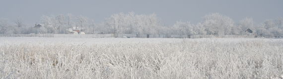 Winter Panorama Poster. Winter panorama with field and Romanian Village Poster Royalty Free Stock Images