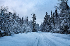 Winter panorama snow-covered forest, Russia, the Urals Stock Photos