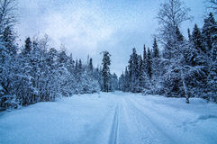 Winter panorama snow-covered forest, Russia, the Urals Royalty Free Stock Photography