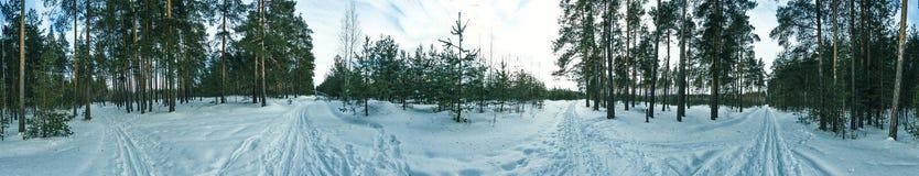 Winter panorama. With snow roads Stock Photos