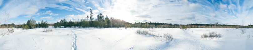 Winter panorama. In the sunny day Stock Images