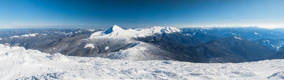 Winter, Panorama, Tanne, Schnee, Landschaft, Berg, Lizenzfreies Stockbild