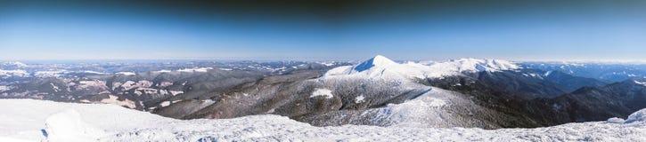 Winter, Panorama, Tanne, Schnee, Landschaft, Berg, Lizenzfreie Stockbilder