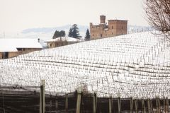Grinzane Cavour vineyards. Color image. Winter panorama of the vineyards of Grinzane Cavour Piedmont, Northern Italy, UNESCO World Heritage Site royalty free stock photo
