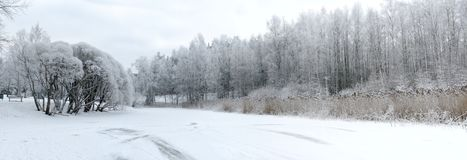 Winter panorama Royalty Free Stock Photography