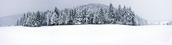 Winter panorama XXL Stock Photos