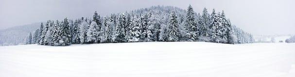 Winter panorama XXL Stock Photos