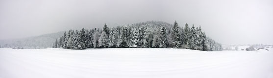 Winter panorama XXL Royalty Free Stock Photography
