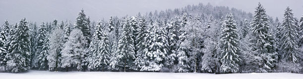 Winter panorama XXL Royalty Free Stock Photos