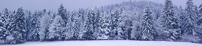 Winter panorama XXL Stock Photography