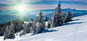 Winter panoramic landscape in mountains. Royalty Free Stock Photography