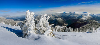 Winter panoramic landscape in mountains. Stock Image