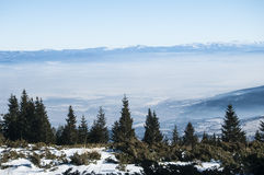 Winter panoramic landscape Royalty Free Stock Photos