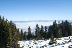 Winter panoramic landscape Stock Image