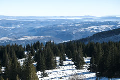 Winter panoramic landscape Royalty Free Stock Image