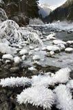 Winter panoramic view Royalty Free Stock Image